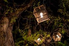 Lâmpada da gaiola de pássaro Imagens de Stock