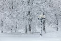Lâmpada de rua coberta na neve profunda Imagem de Stock