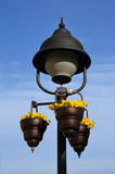 Lâmpada de rua com flores Fotografia de Stock