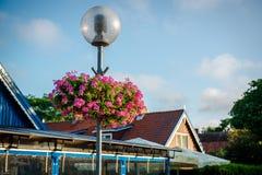 Lâmpada de rua decorada com flores cor-de-rosa fotos de stock