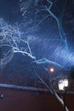 Lâmpada de rua leve durante uma tempestade da neve Imagem de Stock Royalty Free