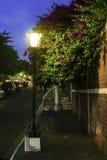 Lâmpada de rua na noite Fotografia de Stock