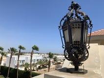 Lâmpada de rua Nas palmeiras do fundo imagens de stock royalty free