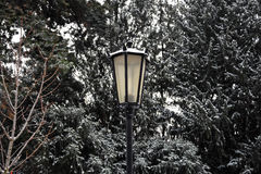 Lâmpada de rua nevado Fotografia de Stock Royalty Free