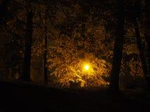 Lâmpada de rua no crepúsculo fotos de stock royalty free