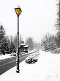 Lâmpada de rua no inverno Fotografia de Stock Royalty Free