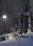 A lâmpada do abeto e de rua Imagem de Stock Royalty Free