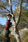 Lâmpada do feriado Imagem de Stock Royalty Free