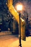 Lâmpada do parque na noite imagens de stock