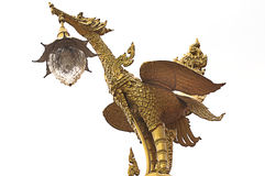 Lâmpada dourada da cisne em um fundo branco Fotos de Stock