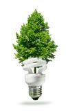Lâmpada e árvore de Eco Fotografia de Stock