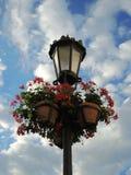 Lâmpada e flores de rua Foto de Stock