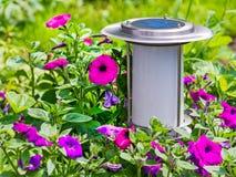 Lâmpada a energia solar do jardim no fundo da flor. fotografia de stock