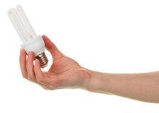 A lâmpada fluorescente de poupança de energia à disposição é isolada no branco Imagem de Stock