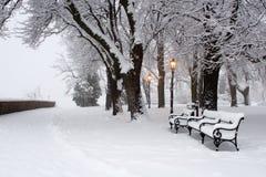 Lâmpada no parque do inverno imagens de stock royalty free