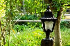 Lâmpada velha no jardim Imagem de Stock