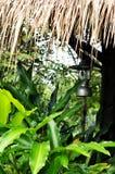 Lâmpada velha sob o telhado das folhas com floresta tropical Imagem de Stock Royalty Free
