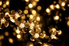 Lâmpadas da árvore de Natal Fotos de Stock