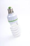 Lâmpadas da economia de energia Fotos de Stock Royalty Free