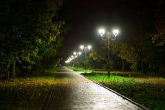 Lâmpadas das lanternas da noite do parque: uma vista de uma passagem da aleia, caminho em um parque com árvores e céu escuro como Fotografia de Stock