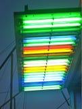 Lâmpadas de néon Foto de Stock