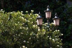 Lâmpadas de rua elétricas retros velhas feitas do estilo do metal Imagem de Stock