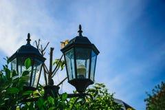 Lâmpadas elétricas, dois situados no quintal Fotos de Stock