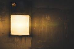Lâmpadas na passagem no jardim na noite Fotografia de Stock Royalty Free