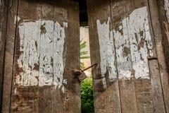 lÃ¥st trä för dörr Royaltyfri Bild