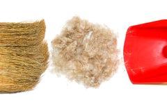 Lãs da limpeza e cabelo do fim do animal de estimação acima Lãs e cabelo da limpeza com uma vassoura e uma pá Imagem de Stock Royalty Free