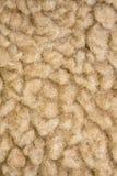 Lãs dos carneiros Fotografia de Stock