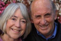 Lächelnde ältere Paare. Stockbilder
