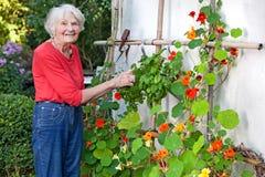 Lächelnde alte Frau, die an ihrer Blumen-Rebe aufwirft Stockbilder