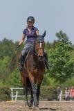 Lächelnde blonde Reiterin reitet ein braunes Pferd Stockfotografie