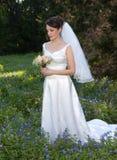 Lächelnde Braut auf dem Bluebonnetgebiet Stockbilder