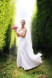 Lächelnde Braut unter Bäumen im Sonnenlicht lizenzfreies stockfoto