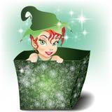 Lächelnde Elfe in einem Paket Lizenzfreies Stockfoto