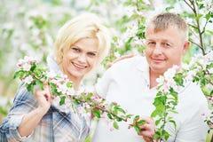 Lächelnde erwachsene Paare am Blütenapfelgarten Stockfoto