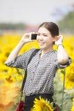 Lächelnde Frau bei der Anwendung des Handys auf dem Sonnenblumengebiet Stockbilder
