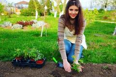 Lächelnde Frau, die Blumen pflanzt Stockfotografie