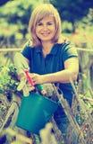 Lächelnde Frau, die Gartenbauwerkzeuge im Garten auf sonnigem DA hält Lizenzfreies Stockbild