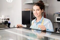 Lächelnde Frau, die im Café arbeitet lizenzfreie stockfotografie