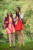 Lächelnde Freunde Stockbilder