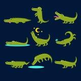 Lächelnde freundliche Krokodil-Zeichentrickfilm-Figur und seine täglichen wildes Tier-Tätigkeiten eingestellt von den Illustratio Stockbild