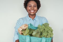 Lächelnde junge Afrikanerin, die eine Tasche von Lebensmittelgeschäften hält Lizenzfreie Stockfotos