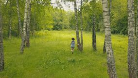 Lächelnde junge Frau Arial-Ansicht im Waldfollow-me in Wald stockbild