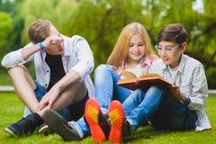 Lächelnde Kinder, die Spaß- und Lesebuch am Gras haben Kinder, die draußen im Sommer spielen Jugendliche teilen im Freien mit Lizenzfreies Stockbild