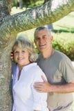 Lächelnde reife Paare außer Baum am Park Stockfotos