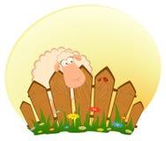Lächelnde Schafe der Karikatur nach einem Zaun Lizenzfreies Stockbild