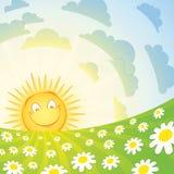 Lächelnde Sonne und Kamille Vektor Abbildung